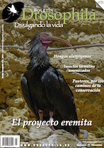 Revista número 21 Drosophila