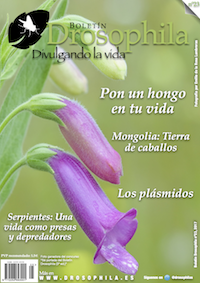 Revista número 23 Drosophila