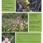 Orquidioflora Andaluza (Curso)