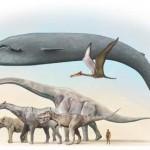 El animal más grande que jamás ha existido