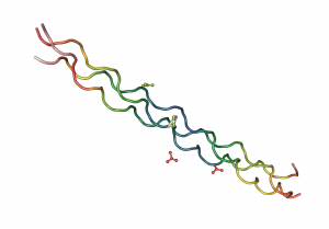 Una representación de la  estructura de un colágeno.