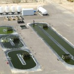 Verdades sobre la producción de biocombustible de microalgas