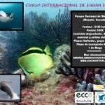 Curso Internacional de Fauna Marina