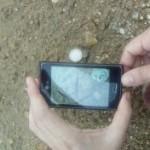 Una aplicación móvil para identificar huellas de aves andaluzas
