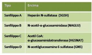 Esquema que recoge los diferentes subtipos de Sanfilippo descritos hasta la fecha y qué enzima se implicada se encuentra defectuosa en cada uno de ellos.