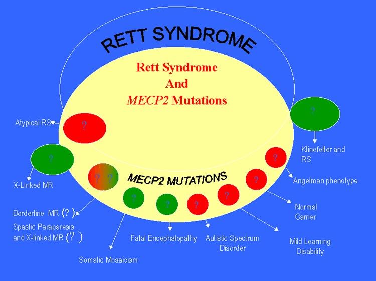 Gráfico con mutaciones MECP2 y sus posibles implicaciones en otras enfermedades