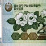 La biología en tu cartera: Magnolia de Corea del Norte