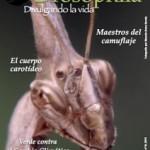 Boletín Drosophila: Número 16 disponible en pdf.