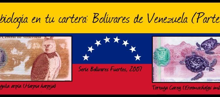 BOLÍVARES 2