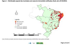 Casos de microcefalia registrados en Brasil hasta la fecha. Las autoridades están estudiando si existe una correlación entre la incidencia de microcefalia en neonatos en el país sudamericano y los casos registrados de enfermos por el virus Zika.
