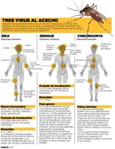 Tabla comparativa de síntomas con que cursan los virus Zika, el dengue y el chigunkunya. Como puede observarse, son enfermedades donde la sintomatología es muy similar, pudiendo dar lugar a errores en el diagnóstico clínico.