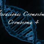 Alteraciones cromosómicas: el cromosoma 4