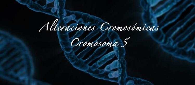 Cromosoma 5