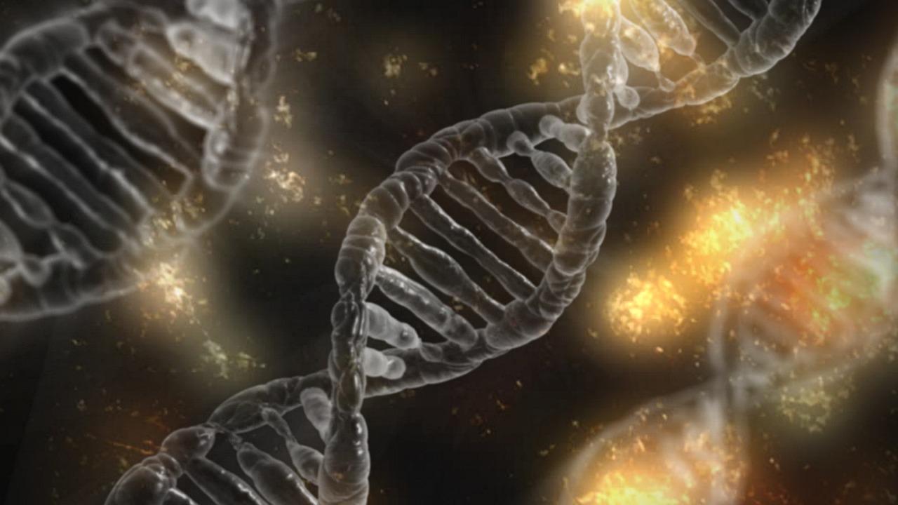 Cromosoma 8 alteraciones cromosómicas