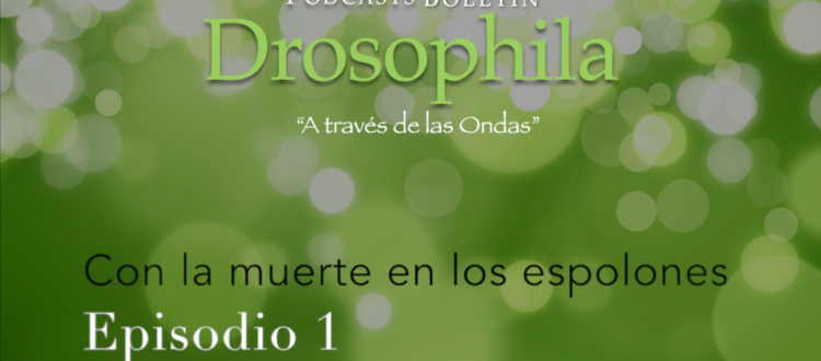 Podcasts Boletín Drosophila 01