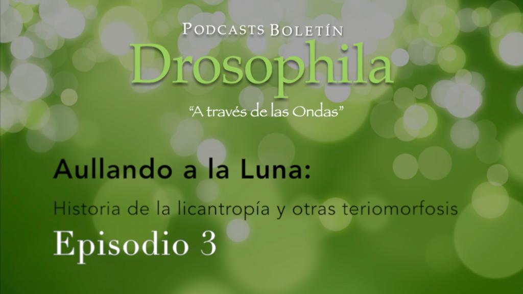 Podcast Drosophila 3  Aullando a la Luna: historia de la licantropía y otras teriomorfosis