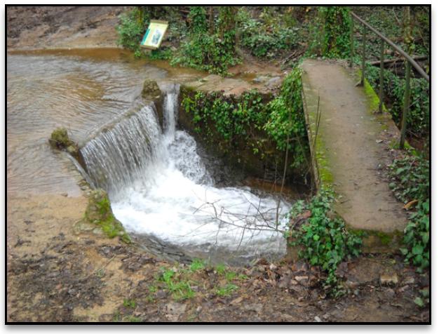 Imagen del Río Jabugo.