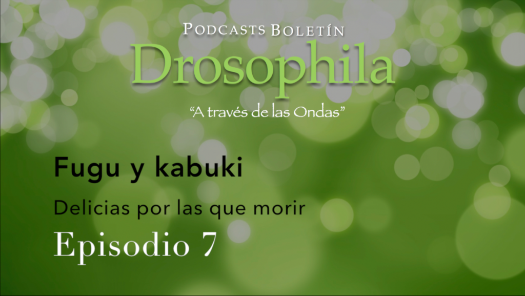 Podcasts Boletín Drosophila 7 Fugu y Kabuki
