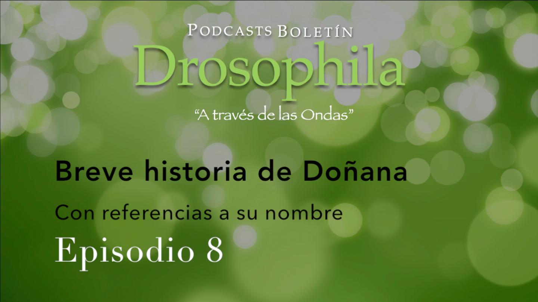 Podcast BD 08 - Breve historia de Doñana, con referencias a su nombre