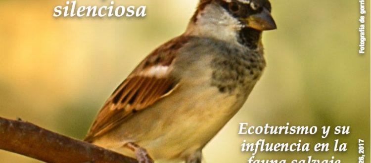 Último número de Boletín Drosophila